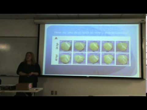 Interpreting Scientific Data