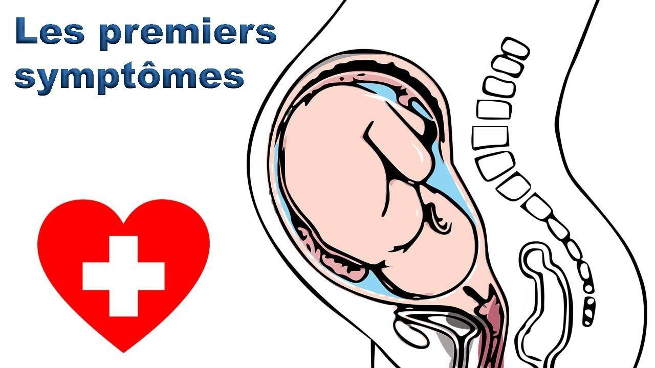 Premier mois de grossesse : Les premiers symptômes @Enceinte Santé