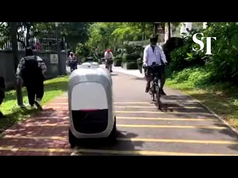 Robots deliver groceries and parcels to Punggol residents in one-year trial