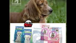 Корм для собак Ortin