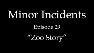 Minor Incidents - Episode 29