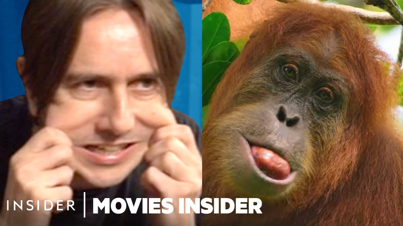 Download How Sounds Are Faked For Nature Documentaries | Movies Insider