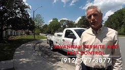 Top 5 Reasons Your Pest Control Company Isn't Getting The Job Done-Savannah Termite and Pest Control