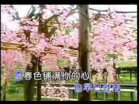 Old mandarin song -真的好相你jest