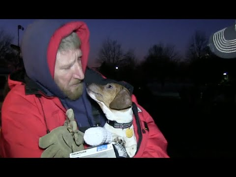Homeless Dog Rescue Prank