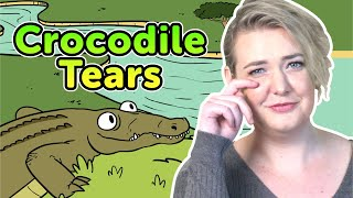 Crocodile Tears | Bedtime Stories | Story time | Made by Red Cat Reading