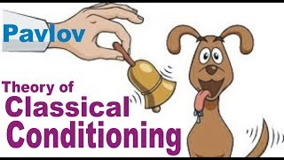 Pavlov Classical Conditioning - Sanjeev Sir Pavitracademy DSSSB, TET, CTET, HTET, REET, UPTET