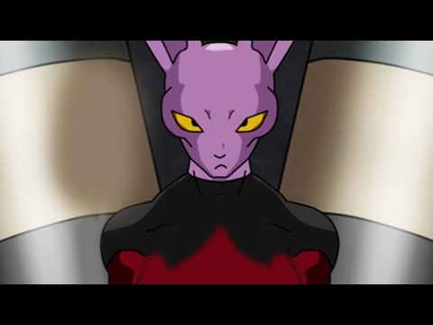A New Member of Beerus's Family