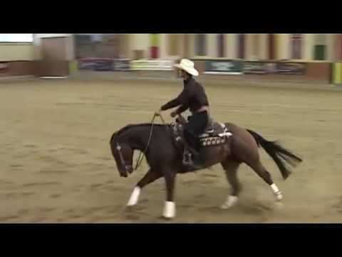 AUSTRIAN MATURITY --- Final Open Reining ---  Juli 2014