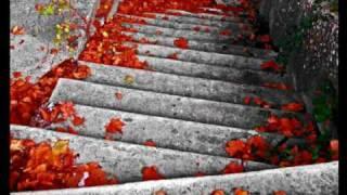 The Best Pessimist- Autumn Leaves