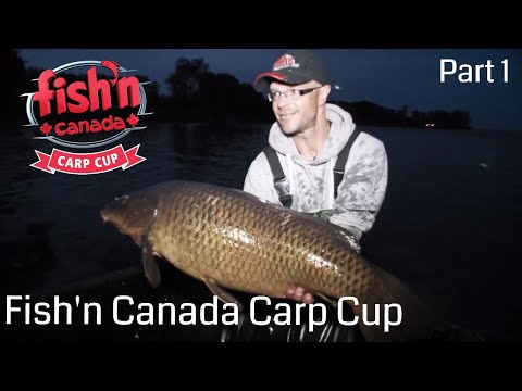 2018 Fish'n Canada Carp Cup Part 1   Fish'n Canada