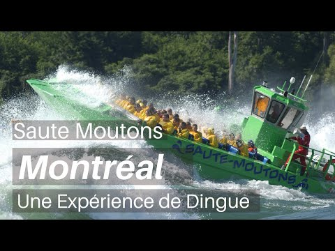 MONTREAL Jet Boating  (Saute-Moutons)   My Trip My Adventure