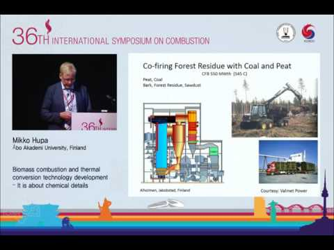 Biomass Combustion and Thermal Conversion Technology Development, Mikko Hupa