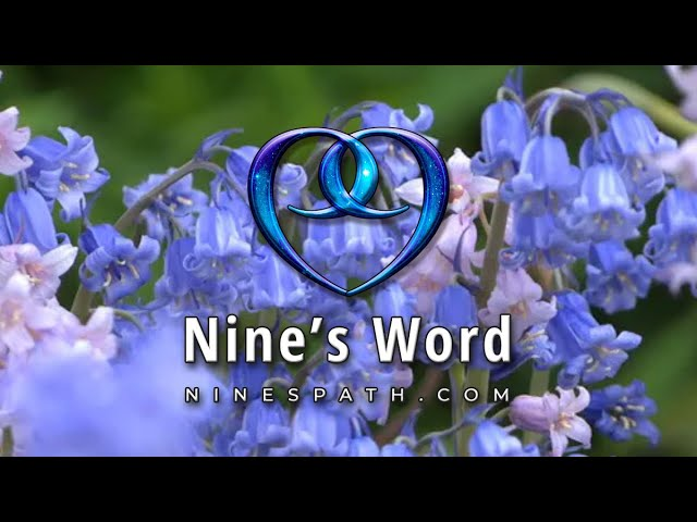Taking Root in Destiny   Nine's Word Pleiadian Message