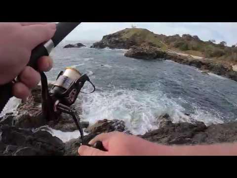 Lighthouse Rock Fishing For Yellow-Fin Bream Australia