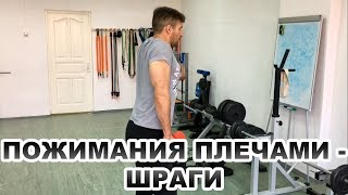 видео Шраги со штангой, рельеф трапеций и плечей