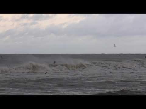 Gulf Shores as Hurricane Michael comes ashore