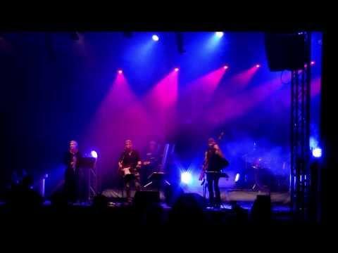 Die ZonenRocker mit dem Albatros aus der Live DVD