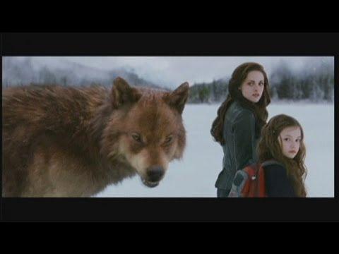 euronews cinema - Сумерки. Финал саги