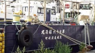 釧路港に集結する巻網船