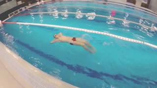 плавание обучение( видеокурс)спина -основные положения рук(нажмите субтитры)