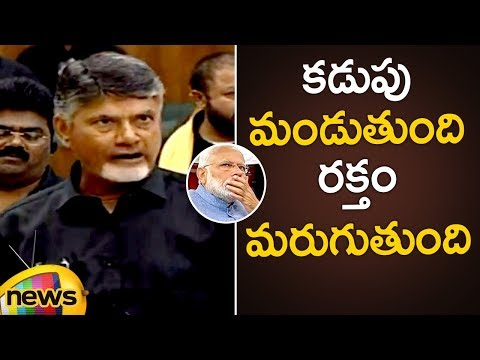 AP CM Chandrababu Naidu Fires On PM Modi | AP Assembly Session | AP Elections 2019 | Mango News