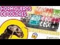 Video: Fungo acrilico NaturColor 20x10x1cms