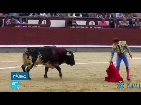 إسبانيا: الكورونا تنعكس على قطاع مصارعة الثيران  - نشر قبل 17 دقيقة