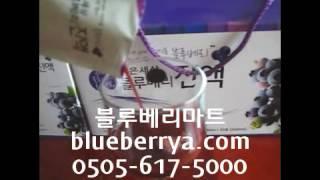 블루베리종류,블루베리진액,블루베리엑기스,블루베리농축액,…