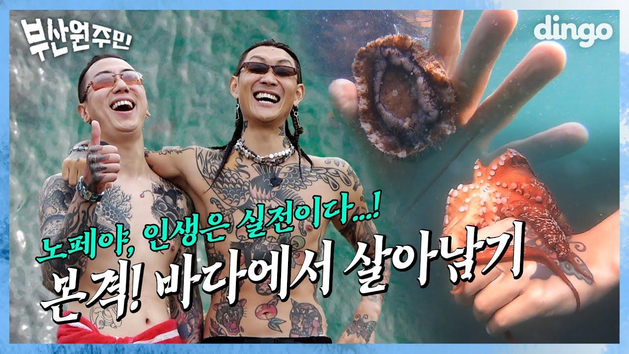 바다, 무한으로 즐겨보세요🐙 l [🌊부산원주민] EP 03. 노스페이스갓