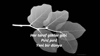 Best Turkish song Yeni bir dünya LYRICS (Turkish songs)