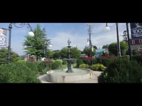 Welcome to Danville,Pennsylvania | Villager Reality