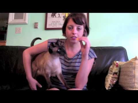 Georgia Hardstark Cat Video