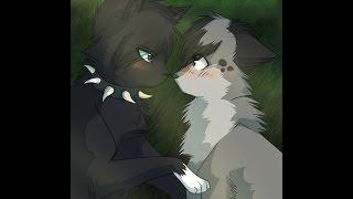 Топ 10 самых популярных пар Котов Воителей
