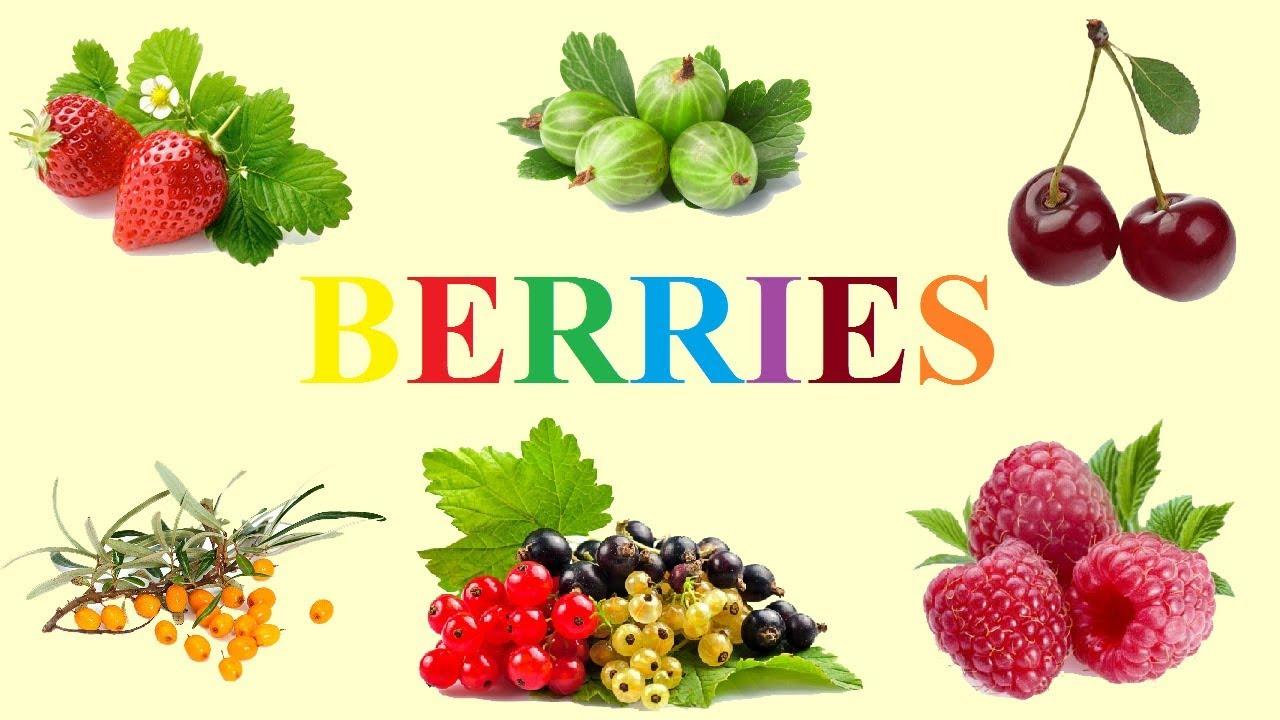 ягоды в картинках на английском всех