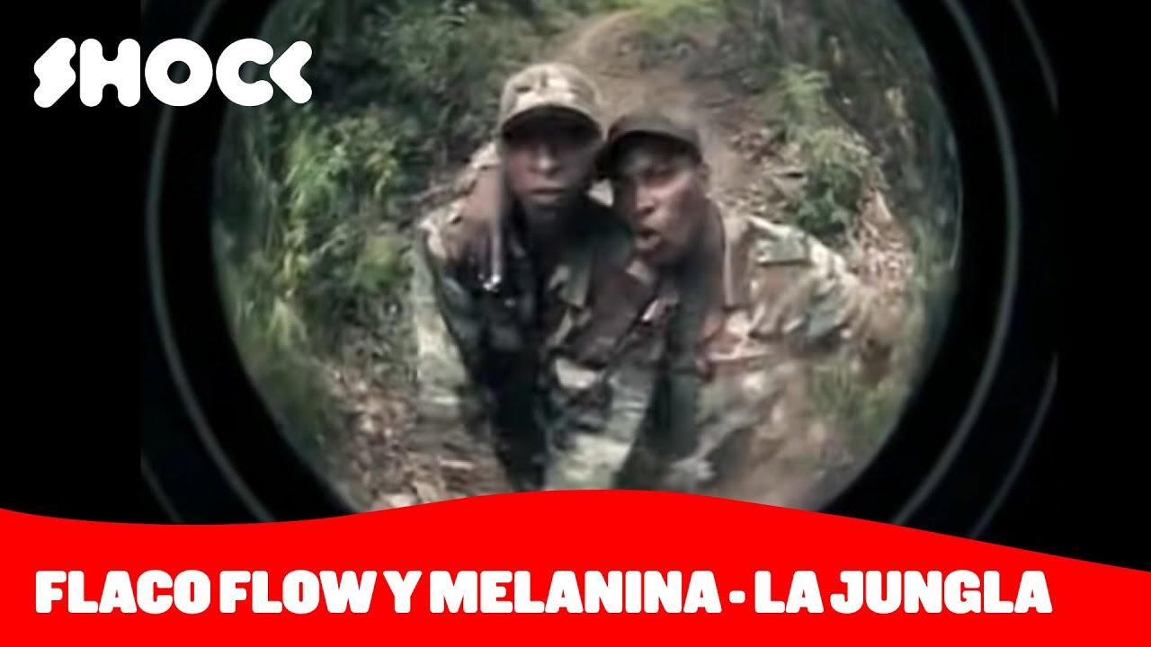 Flaco Flow y Melanina - La Jungla [Detrás de la canción Shock]