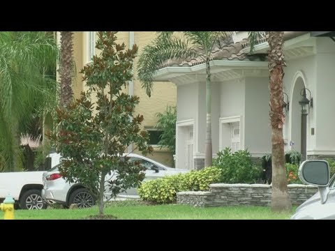 Davis Islands homeowners discover houses rented by scammers