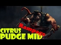 Pudge Rampage By Citrus mp3