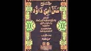 Sunan Abu Dawud  Sh/ Hassen Abdallah  part 20