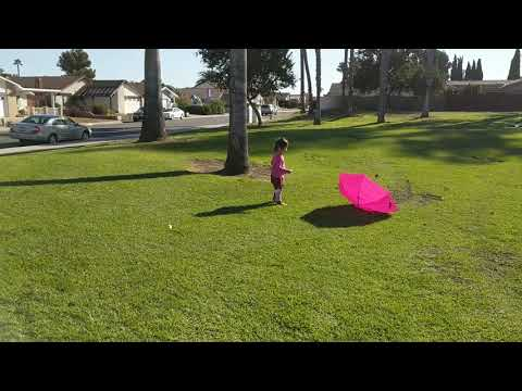 Maddy kicking an umbrella during Santa Ana winds