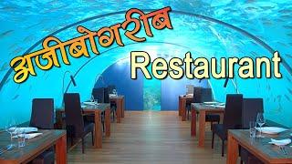 अजीबोगरीब Restaurant जहां लड़कियों की बॉडी पर परोसते हैं खाना | Travel Nfx