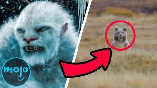top-5-freaky-facts-about-yetis