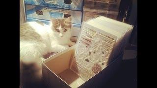 [Craftroom]: Pochette DIY pour rangement tampon & dies