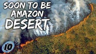 Video The Amazon Rainforest Is BURNING DOWN download MP3, 3GP, MP4, WEBM, AVI, FLV Agustus 2019