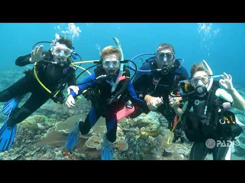 Crazy, Awesome Dive Lifestyle | Scuba Diving Kids Programs