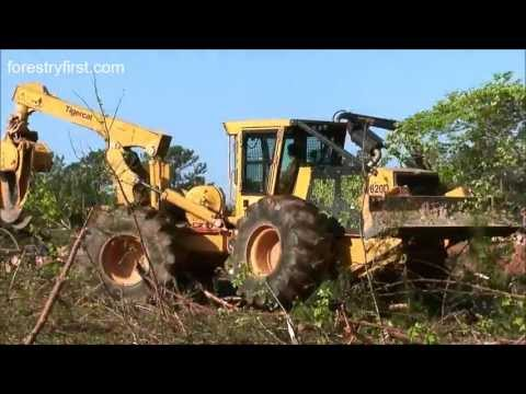 2009 Tigercat H250B Harvester with Waratah 622 Processor at Forestry First Part 2