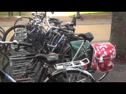 Large Selection of Bikes and Bags in Holland