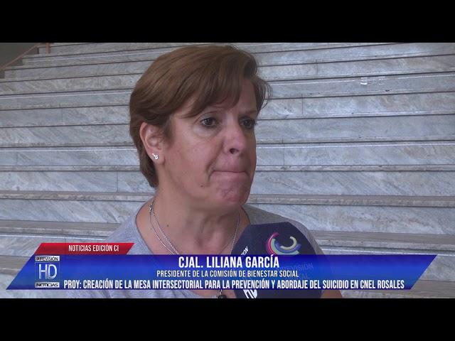 Cjal García Proy  Creación de la Mesa Intersectorial para la Prevención y Abordaje del Suicidio en C