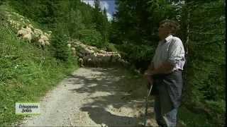 Rando dans les Alpes - Echappées belles