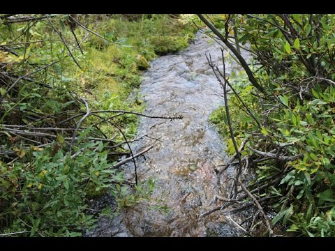 Solei Gold 20 Acre Placer Mining Claim on Trout Creek Montana